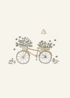 Ryn Frank is a freelance illustrator, specialising in hand drawn illustrations. Realistic Flower Drawing, Simple Flower Drawing, Easy Flower Drawings, Beautiful Flower Drawings, Easy Drawings, Bike Drawing Simple, Simple Flowers, Bicycle Illustration, Watercolor Illustration
