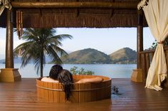 Pestana Angra #Beach is most amazing #resort in #Brazil, For more visit http://www.hotelurbano.com.br/resort/pestana-angra-beach/630