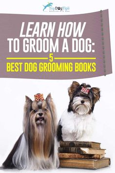 Do you have an amazing pet grooming business but youre struggling 20 best dog grooming books for beginners intermediates and total pros solutioingenieria Gallery