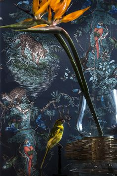 Ochre - Baccarat - Maxalto - Petite Friture - CC Tapis - Flexform - Hermes Wallpaper - jardin d'osier - equateur - Lindell & co - Ochre - Serge Mouille - Baxter