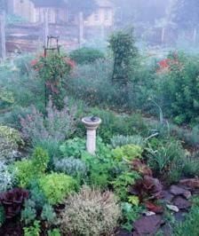 An herb garden is one of the special pleasures of summer