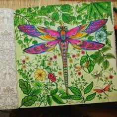 Perfeito! Parabéns  divulgue sua arte, use #colorindolivros e marque ✔ seus amigos.  @Regrann from @bubbamosh -  #jardimsecretofans  #jardimsecreto #jardimsecretoinspire #jardimsecreto_brasil  #florestaencantadatop #florestaencantada #florestaencantadainspire #livroparacolorirparaadulto #livroantiestresse #colorindo #livrojardimsecreto #livroflorestaencantada #terapianojardim #jardimdascores #jardimsecretoterapia #Regrann