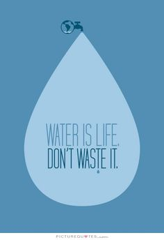 Water is life. Don't waste it. Life quotes on PictureQuotes.com.