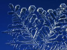 Snowflake Crystal  Photograph by John Dunn    A snowflake appears translucent when photographed up-close.