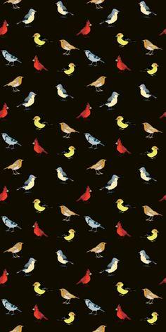 Camiseta fullprint Passarinhos do Studio Zavagli por R$60,00