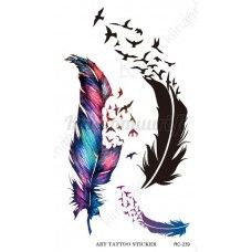 Two Stylized Feathers With Scattering Birds In The Form Of A