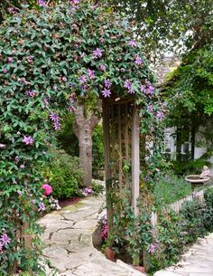 Ill take this please.....a lovely entrance for the walkway and leads to backyard.