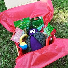 "Pup Pax are care packages for dogs, filled with only quality hand-selected items that both dogs and their owners will love and use. No monthly subscriptions necessary, no surprise ""variety"" assortments (what you see pictured is what you get in your kit). Each Pup Pax Includes 7 Quality... more details available at https://perfect-gifts.bestselleroutlets.com/gifts-for-pets/for-dogs/product-review-for-dog-treats-and-toys-gift-box-by-pup-pax-ball-stuffed-toy-chicken-tr"