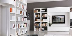 So, do you want a modern living room with a perfect bookshelf