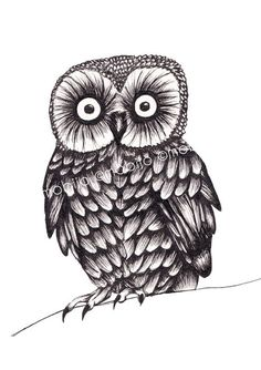 Items similar to Owl ink drawing-print of original ink illustration on Etsy Black And White Owl, Owl Pictures, Baby Drawing, Vintage Owl, Ink Drawings, Owl Bird, Baby Owls, Ink Illustrations, Sketches