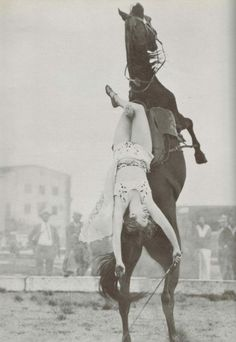 trick rider dorothy herbert in 1939 doing her signature move - laying back on a rearing horse; ringling bros