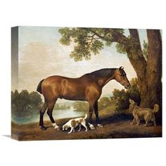 Global Gallery 'A Bay Hunter, a Springer Spaniel and a Sussex Spaniel, 1782' by George Stubbs Painting Print on Wrapped Canvas Size: