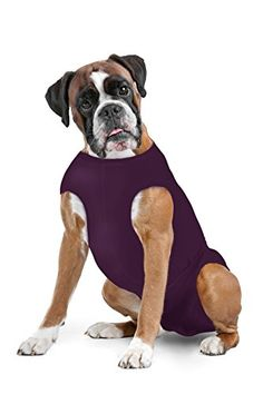 Dog Diaper Keeper - Created By A Veterinarian Specifically to Fit Your Dog - Will Not Fall Off - Sizes: S - XLL (Plum, S) Surgi Snuggly http://www.amazon.com/dp/B00TNH6SLG/ref=cm_sw_r_pi_dp_5-YLwb12719KN