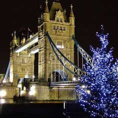 #Christmas at #TowerBridge #beautiful #evening #love #happy #holiday  #festive #wishes #christmastree #christmas2015
