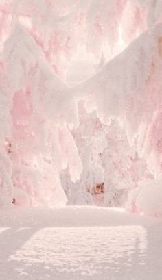~Pink Christmas Delight~