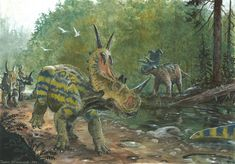 Spinops sternbergorum and Albertaceratops nesmoi. By Tuomas Koivurinne