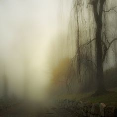 Extreme mist