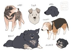31 Ideas For Dogs Design Illustration Artists Cute Animal Drawings, Cute Drawings, Drawing Animals, Dog Drawings, Animal Design, Dog Design, Character Art, Character Design, Animal Doodles