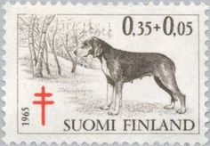 ◇Finland  1965    Finnish Track Dog