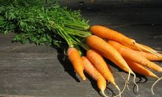 They Heal The Hardest Diseases – Here's Why You Should Not Dispose Of Carrot Leaves