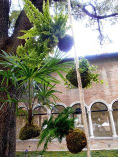 kokedama & co.: Ravenna, in the garden of Casa Oriani