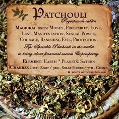 herb, botanical, patchouli, lust, desire, manifestation, spells, witchcraft, witch, patchouly, love, money, riches, www.whitewitchpar...