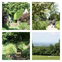 A visit to Hidcote Manor Garden.