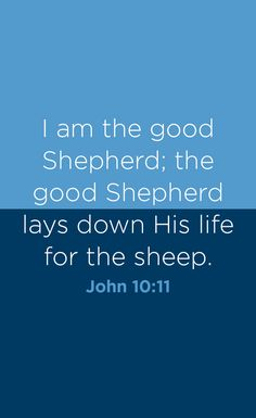 Imagining a scene of a shepherd and his sheep, we may feel envious of the sheep, peacefully grazing without any worries with their protective shepherd nearby. But we believers actually do have the most wonderful Shepherd—our Lord Jesus. We'll see in this post nine ways Jesus has been and continues to be our Shepherd.