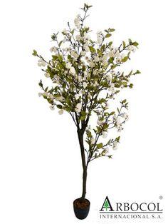 Arbol de durazno flores blancas 17259  $266475    1.85 cms de alto x 90 cms de ancho