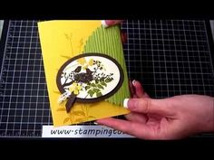World of Dreams Catalog Case with How To Video, Kay Kalthoff is Stamping to Share with Stampin' Up!