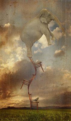 Balancing Act by paulcresswell.deviantart.com on @deviantART