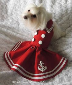 Couture Dog Dress in Nautical Beauty by AllAboutElegance on Etsy