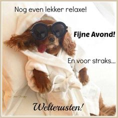 Nog eventjes relaxen,fijne avond. Quotes About Friendship Ending, Best Friendship Quotes, Bff Quotes, Best Friend Quotes, Funny Quotes, Good Night Quotes, Good Morning Good Night, Good Night Massage, Funny Happy Birthday Song
