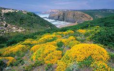 Algarve, Portugal  ALAMY