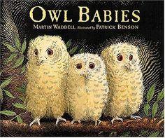 Owl Babies by Martin Waddell,http://www.amazon.com/dp/1564029654/ref=cm_sw_r_pi_dp_lQM3sb1MVX528EJW