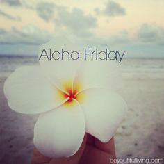 Photos by Aloha Friday | alohafriday1.jpg
