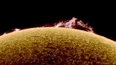Alan Friedman takes insanely beautiful photos of the sun from his suburban backyard.