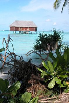 This place looks perfect for a couple vacation. Isn't it? #Maldives www.haisitu.ro #travelideas #placestotravel #vacationideas