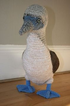 OMG new crochet project. Everyone needs a blue footed boobie.: