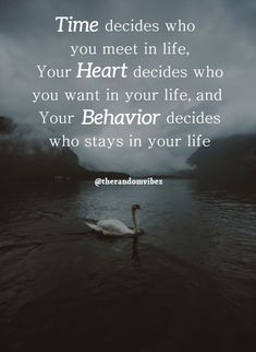 180 Short Motivational Quotes For Success In Life Motivational Quotes For Success, Meaningful Quotes, Positive Quotes, Leadership Quotes, Kind Heart Quotes, Self Love Quotes, Daily Quotes, Situation Quotes, Reality Quotes