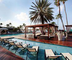 Divi Aruba and Tamarijn Aruba, all inclusive vacations. Time to start thinking about honeymoons!