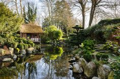 Jason Ingram - Photography portfolio of gardens - Le Manoir Winter. A Bristol based Photographer specialising in Gardens, Food, People and Interiors.