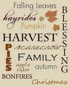 Why we love Autumn