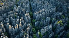 Most Amazing Stone Forest In The World. Amazing Citrus Festival Held In France. The colossal 'Grand Tsingy' landscape in western Madagascar is the world's largest stone forest, where high spiked towers of eroded limestone tower over the greenery. Beautiful World, Beautiful Places, Lovely Things, Amazing Places, Places Around The World, Around The Worlds, Reserva Natural, Kunming, Thinking Day