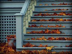 Autumn Enchanted