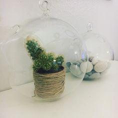 Elämää kuplassa #finnmari #kupla #bubbles #kaktus #minikaktus #lasikupla #koti #myhome #instahome #homedecor #sisustus #koriste #interior #inredning #sisustusinspiraatio
