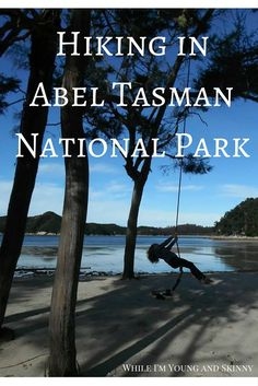 If you visit New Zealand's south island, you should put hiking in Abel Tasman National Park on your itinerary. Take a peek at the day long walk we did. Visit New Zealand, New Zealand Travel, Travel Activities, Outdoor Activities, Nelson New Zealand, Travel Inspiration, Travel Ideas, Travel Info, Abel Tasman National Park