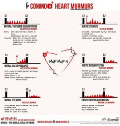 I have a heart murmur. This means that in between every heartbeat you can hear a whoosh. It's the sound of blood going through my heart. Nursing Tips, Nursing Notes, Nursing Programs, Ob Nursing, Nursing Career, Medical Students, Nursing Students, Nursing Schools, Medical School