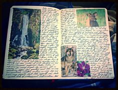 journal idea--add a few pictures that mean something to you at that time