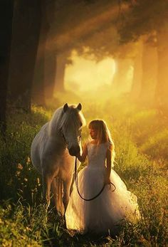 sunlight Horse Fashion Photography Learn about #HorseHealth #HorseColic www.loveyour.horse